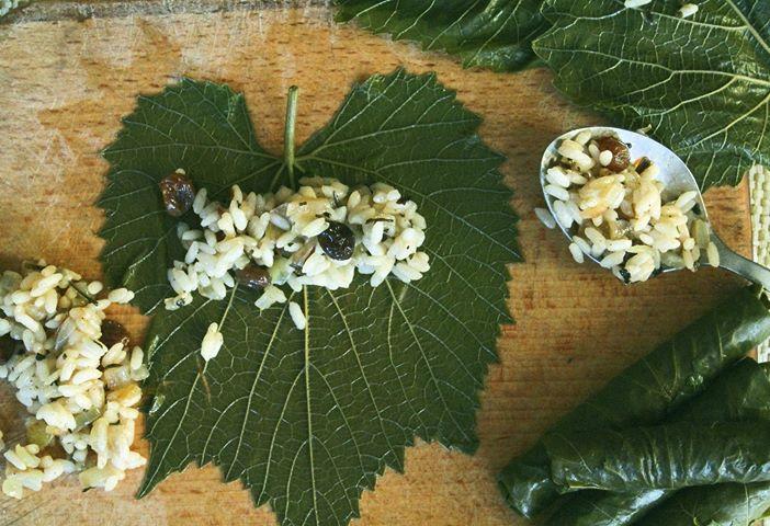 Deux après-midis a rouler des feuilles de vignes