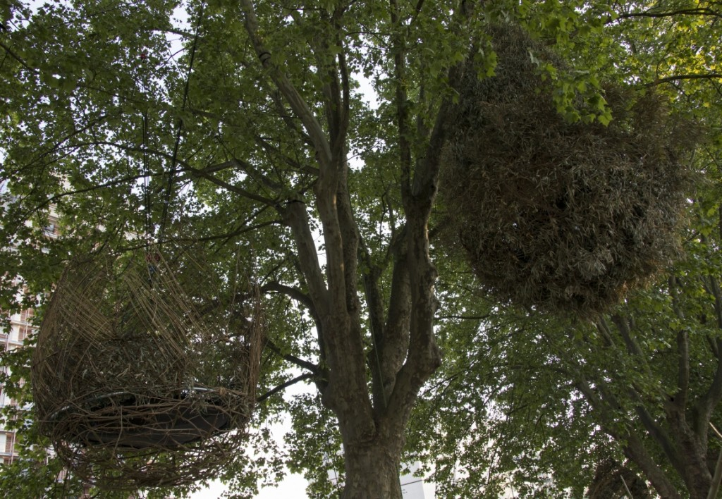 J'ai testé les nids du Shadok - Pokaa