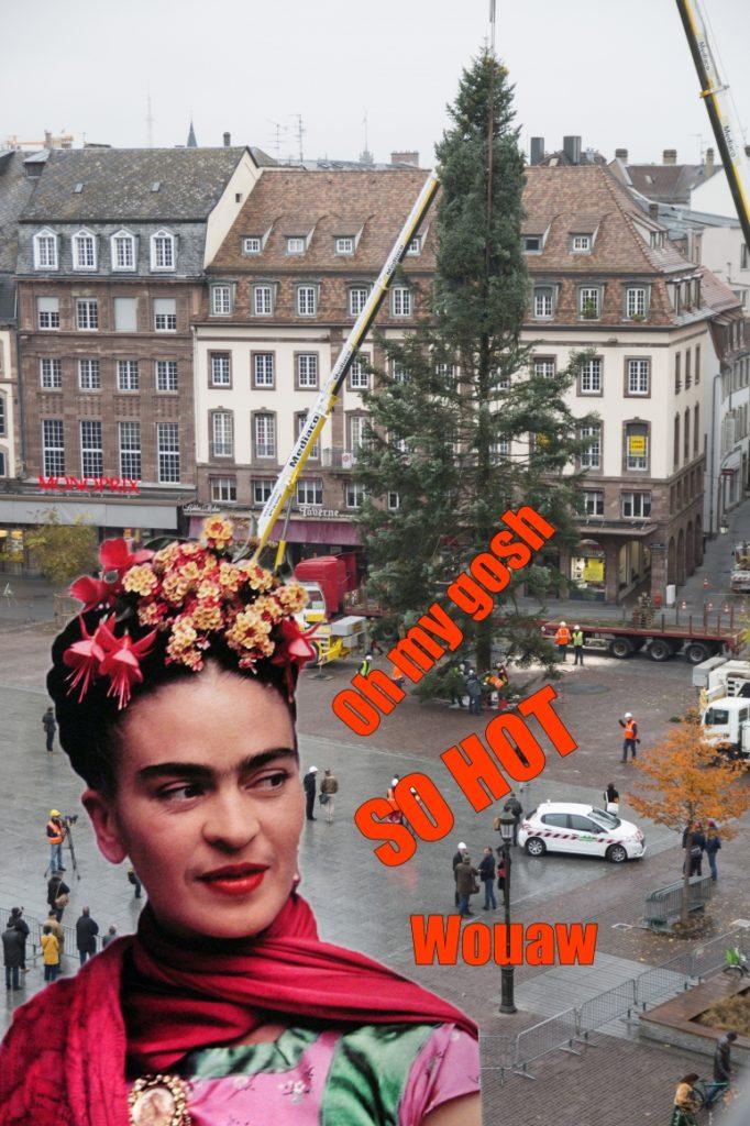 Photos exclusives du sapin de Noël de Strasbourg - Pokaa
