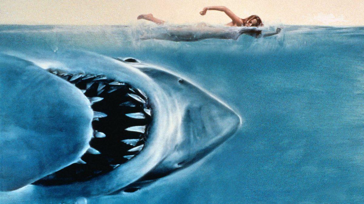 les-dents-de-la-mer-photo-5209fa5318722